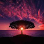 Free fotobanka- obrázky na stiahnutie zadarmo